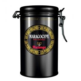 Café Gourmet Maragogype